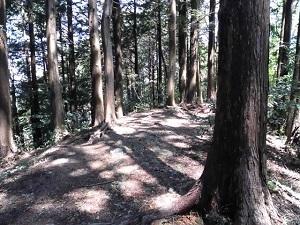 11.吉田山山頂.JPG