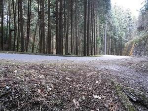 17舗装林道.jpg