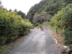 3山道入.jpg