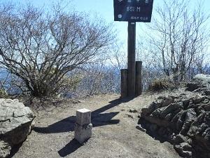 伊豆ヶ岳山頂.JPG